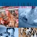 Society & Animals Journal