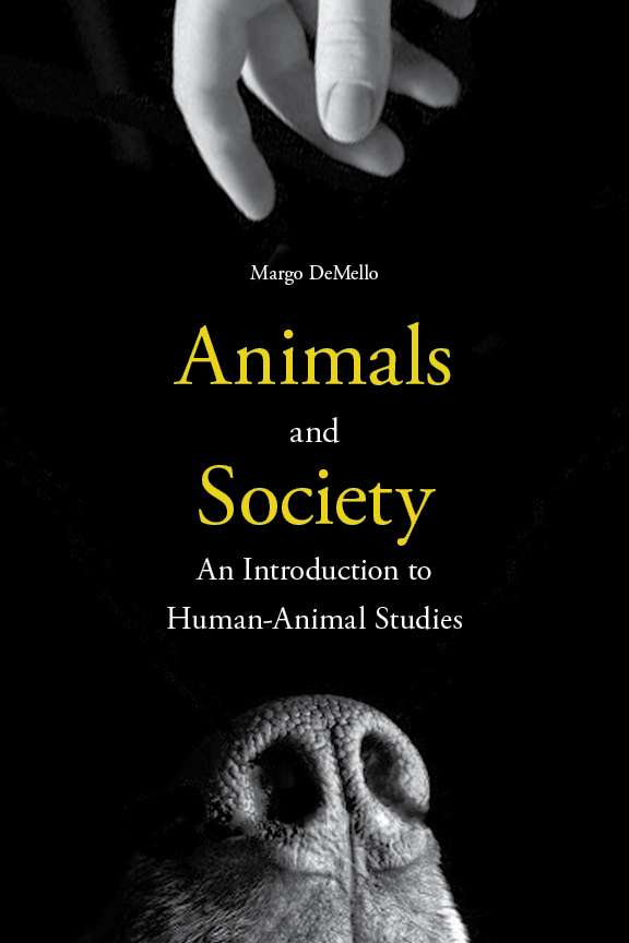 an introduction to the issue of animal testing in todays society Home » why animal experimentation should continue royal society of medicinefeb1984, vol 77 issue procedures on animal experimentation and testing.