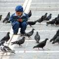 Child_Plays_with_Pigeons