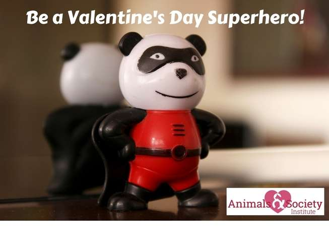 Make A Student's Dream Come True This Valentine's Day
