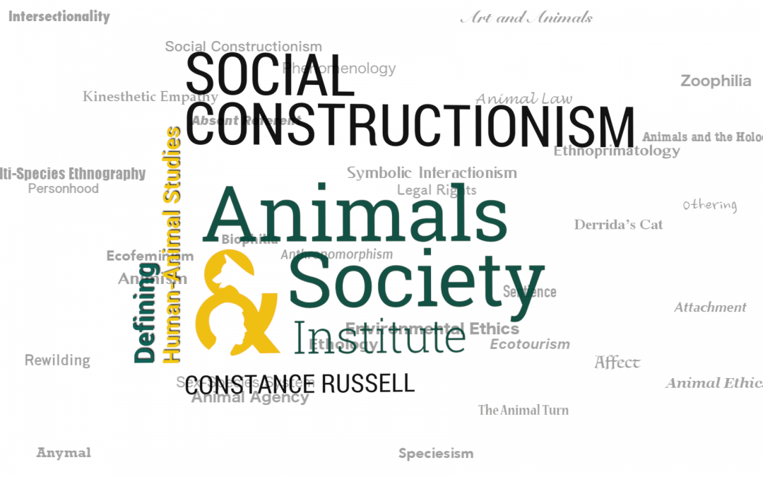 This Week in Defining Human-Animal Studies: Defining Social Constructionism with Constance Russell