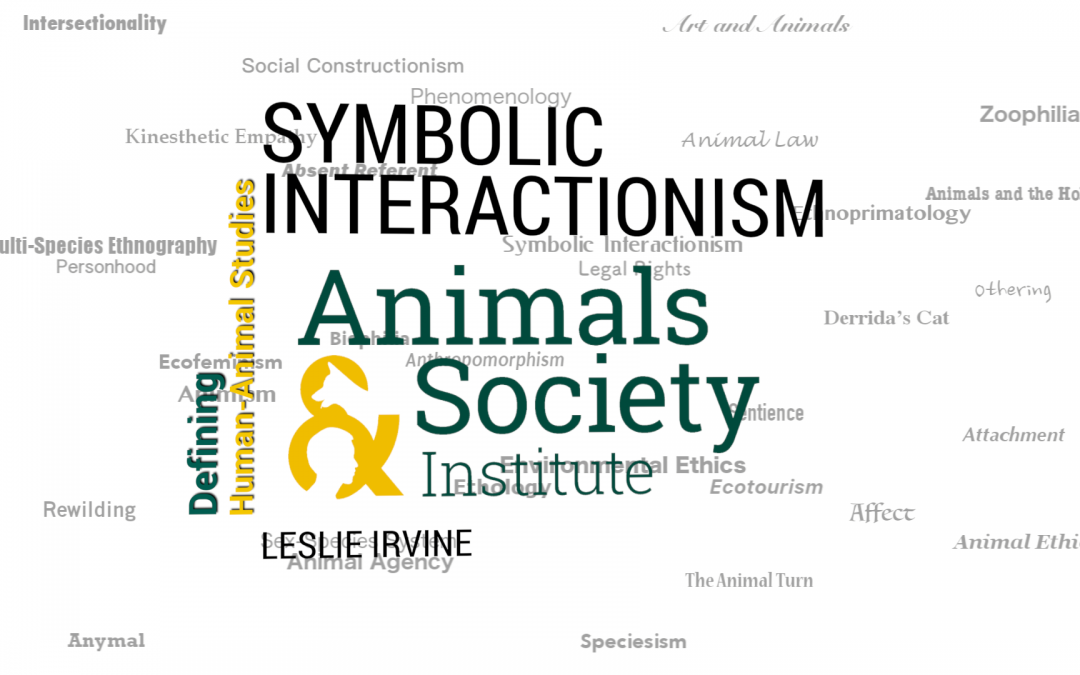 This Week In Defining Human Animal Studies Symbolic Interactionism