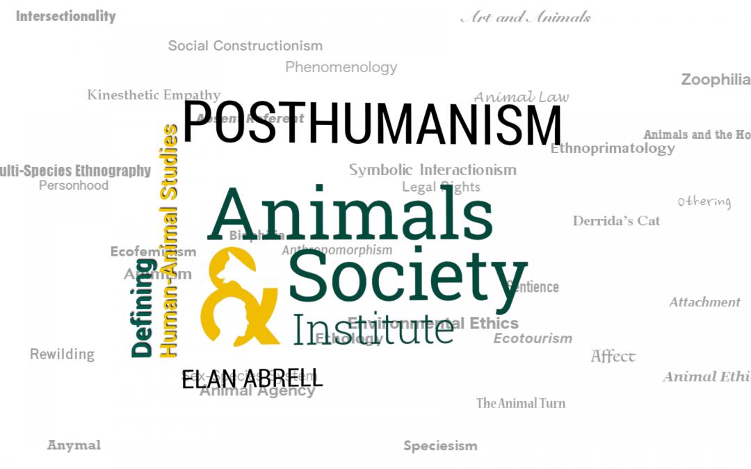 This Week in Defining Human-Animal Studies: Posthumanism
