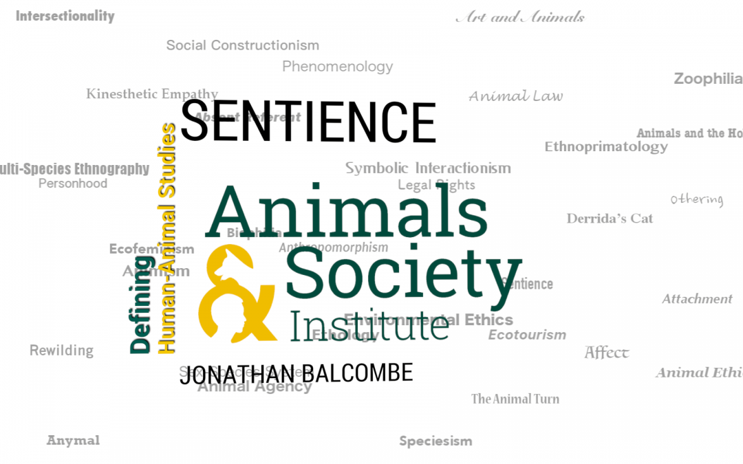 This Week in Defining Human-Animal Studies: Defining Sentience with Jonathan Balcombe