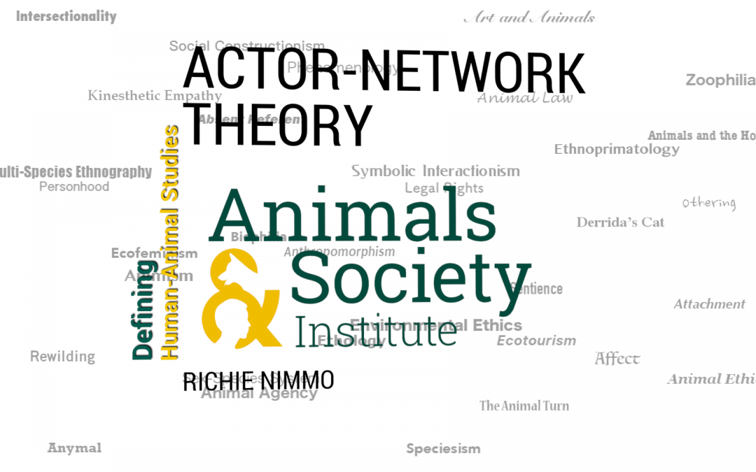 This Week in Defining Human-Animal Studies: Actor-Network Theory with Richie Nimmo