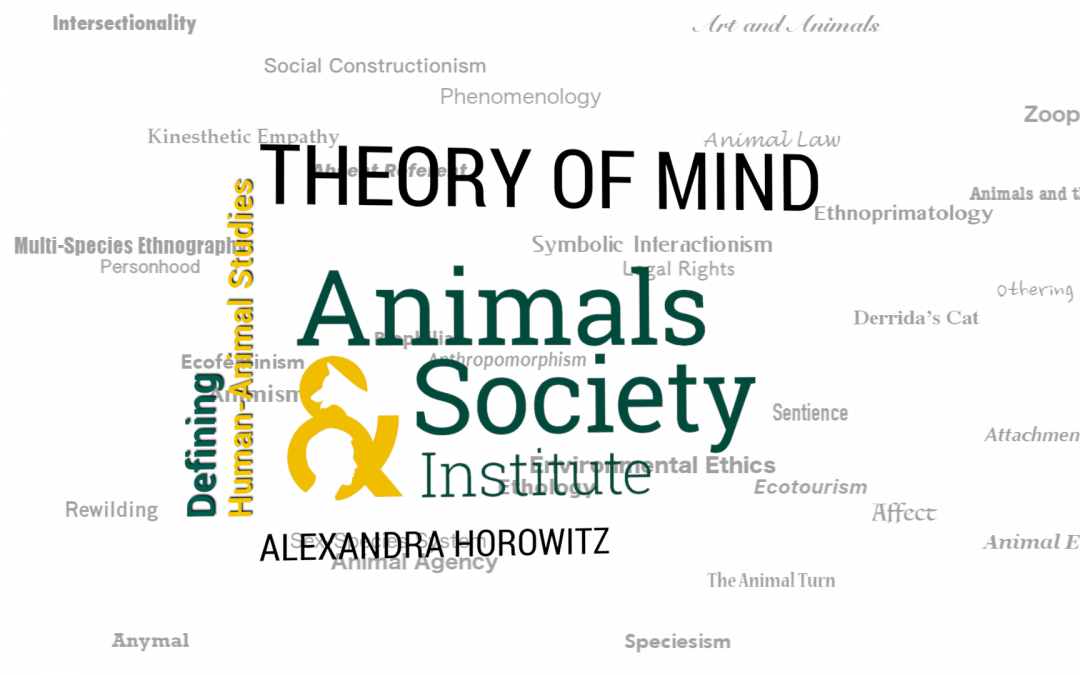 This Week in Defining Human-Animal Studies: Defining Theory of Mind with Alexandra Horowitz