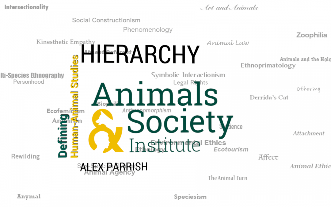 This Week in Defining Human-Animal Studies: Defining Hierarchy with Alex Parrish