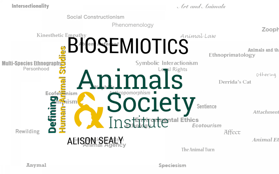 This Week in Defining HAS: Defining Biosemiotics with Alison Sealey