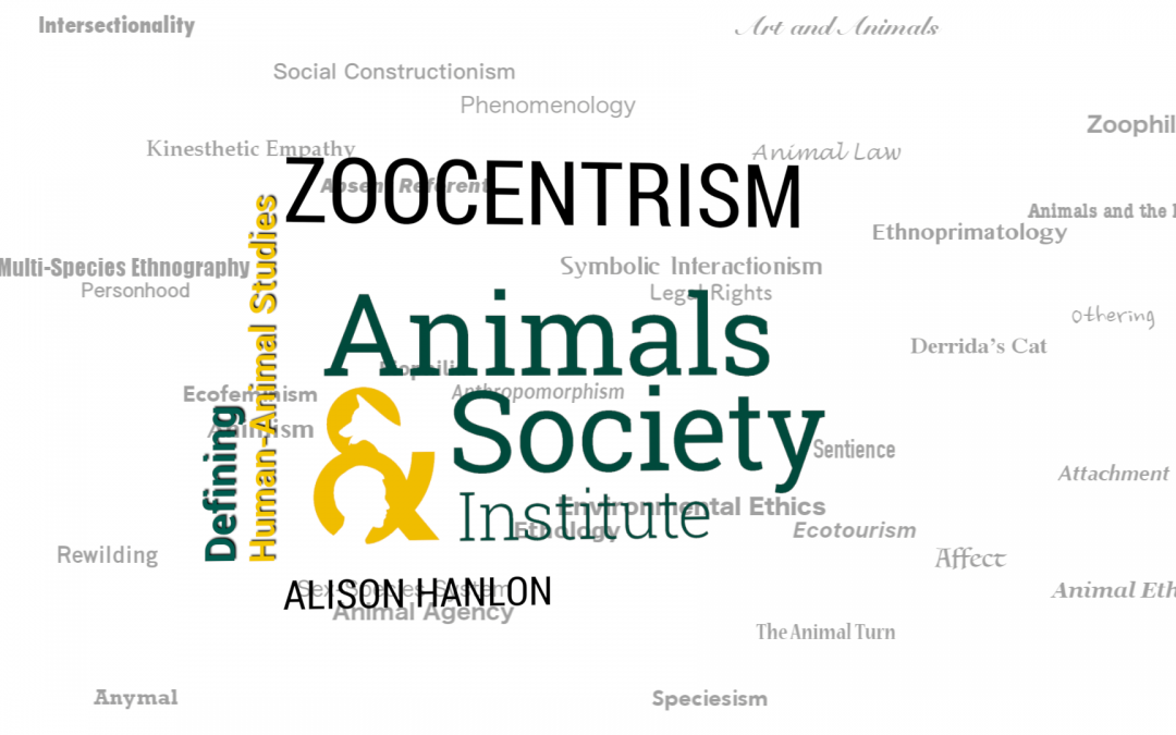This Week in Defining HAS: Defining Zoocentrism with Alison Hanlon