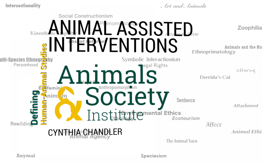 This Week in Defining Human-Animal Studies: Defining Animal-Assisted Therapy with Cynthia Chandler